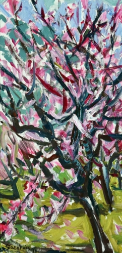 Plum Tree in Flower