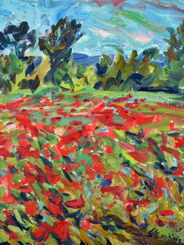 Poppy Fields on Chemin de la Blaque