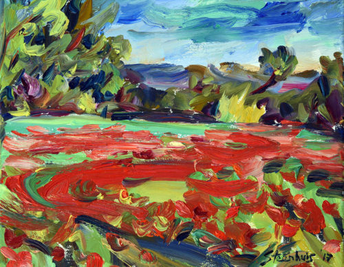 Zig-zag of Poppies in the Fields at Mazargues