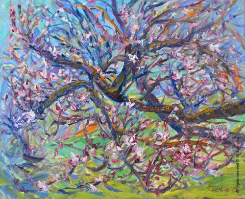 Almond Buds, Blossoms & Branches