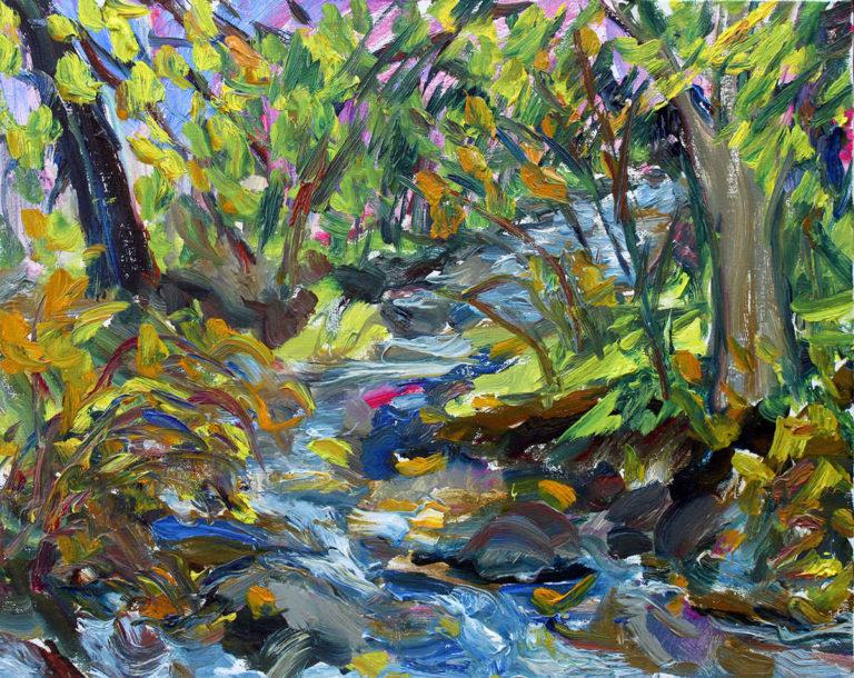 Creek Running through Silvermine