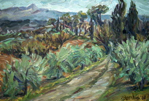 Road through Olive Orchard
